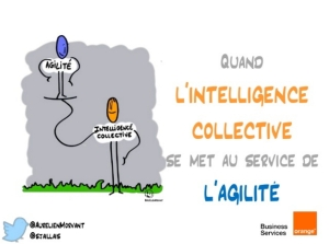 quand lintelligence collective